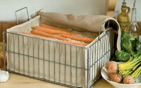 Морковь во мху