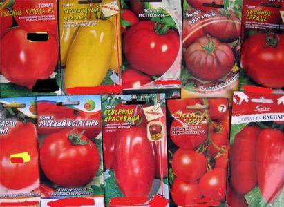 Сорта помидоров