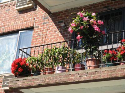 Солнечная сторона балкона
