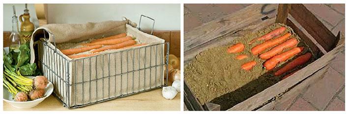 Хранение моркови на балконе